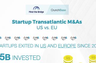 Startup Transatlantic M&As Report